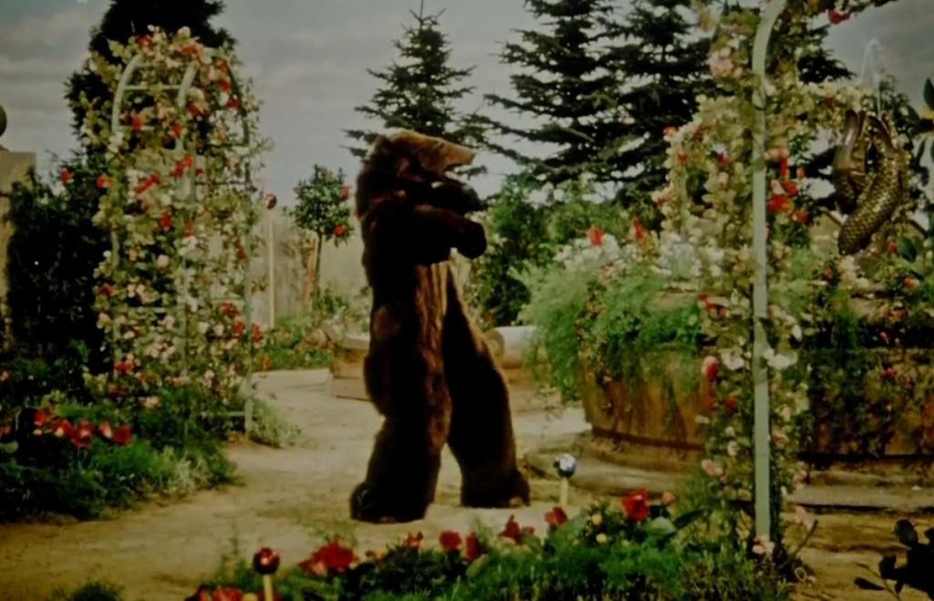 Byl jednou jeden král - medvěd