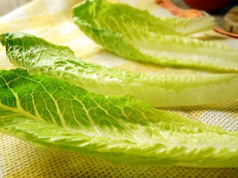 Římský salát - listy